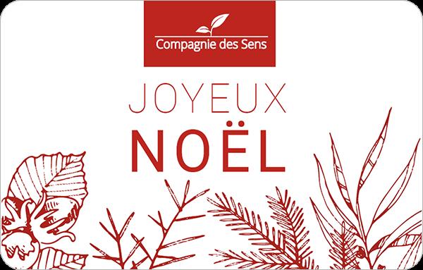 Noel Toutes Nos Idées Cadeaux